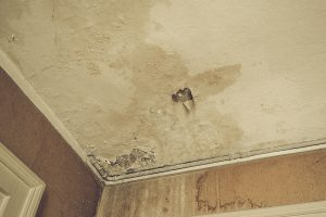 Home Inspection, Moisture Damage, Why to get an inspection